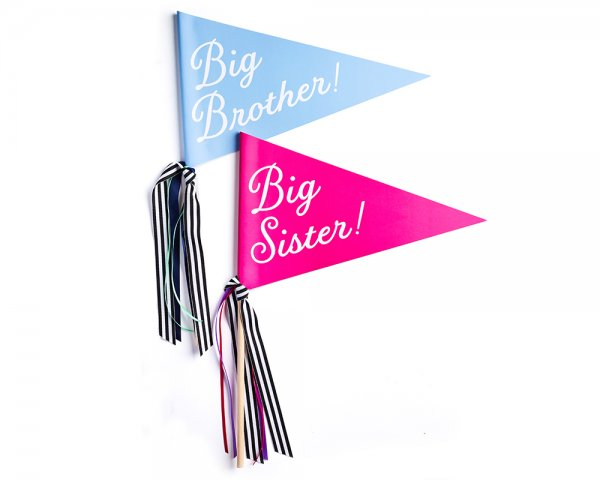 big brother or big sister banner