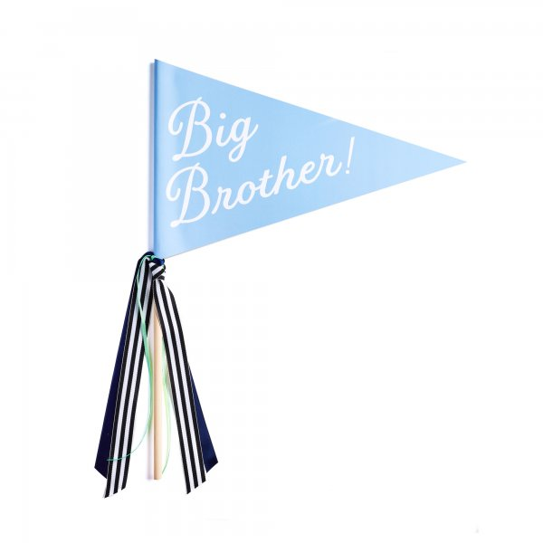 big brother banner