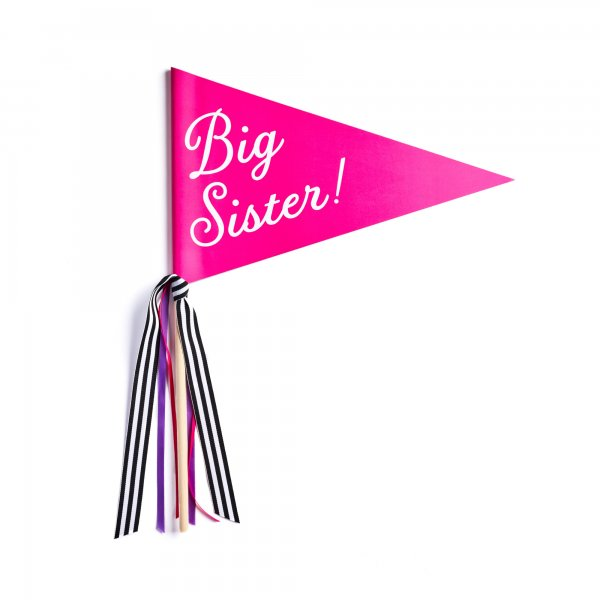 big sister banner